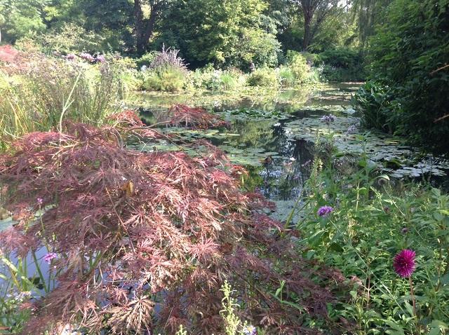 Monet's Garden 2.jpg